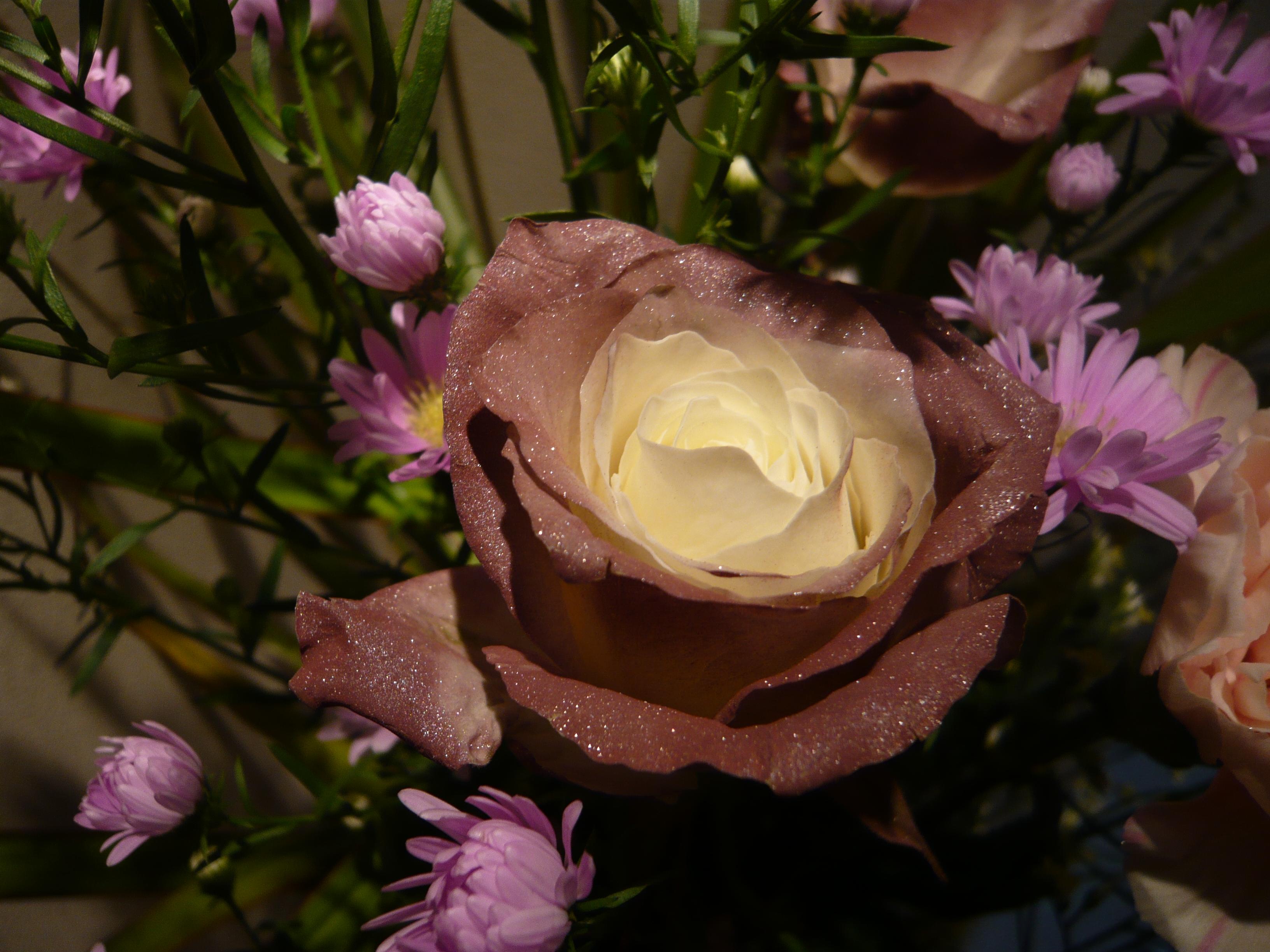 お花の勉強中!