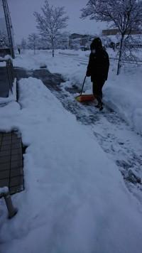 雪ですね(*^^*)